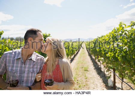 Couple kissing and wine tasting drinking red wine in sunny vineyard - Stock Photo