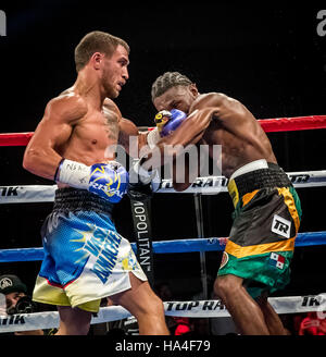 Las Vegas, NV, USA. 26th Nov, 2016. ***HOUSE COVERAGE*** LOMACHENKO vs WALTERS at The Chelsea at The Cosmopolitan - Stock Photo