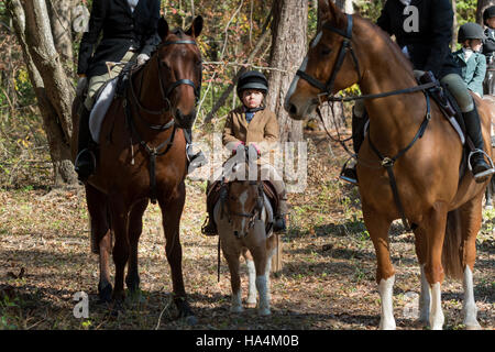 Charleston, United States Of America. 27th Nov, 2016. A young rider is lost between her parents horses during the - Stock Photo