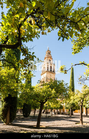 Bell Tower of the Mezquita Cathedral, Cordoba, Spain - Stock Photo