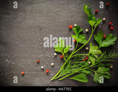 Fragrant fresh parsley and dill arranged on a diagonal on a dark background. White and red pepper peas. - Stock Photo