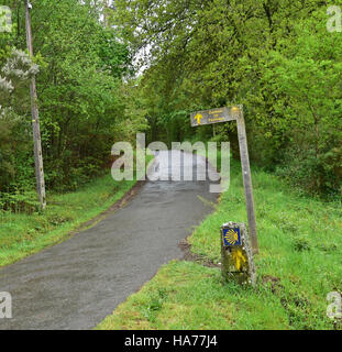 Camino de Santiago de Compestela - The Way of Saint James - through a forest in Spain. - Stock Photo