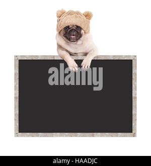 pug puppy dog with knitted hat, hanging with paws on blank blackboard sign with wooden frame - Stock Photo