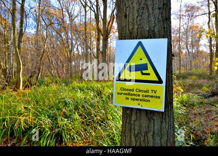 Sign on tree in woodland showing CCTV in operation - Stock Photo