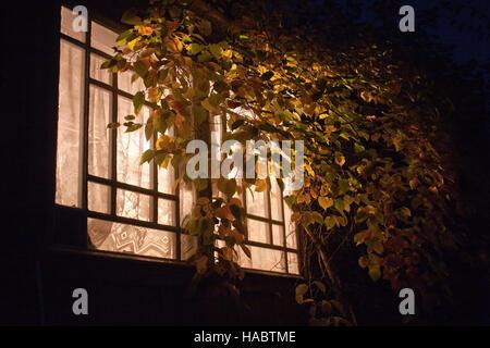 light in veranda window among night darkness - Stock Photo
