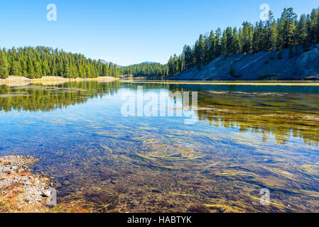 Yellowstone River landscape with beautiful forest reflection in Yellowstone National Park - Stock Photo