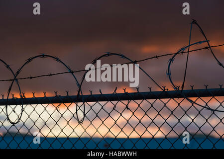 Black barb razor wire atop chain link fence sunset - Stock Photo