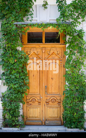 Yellow wooden old door on background of wall with ivy - Stock Photo