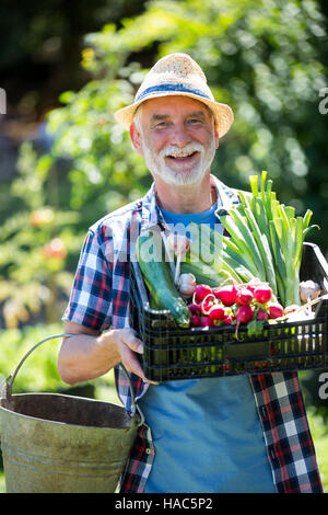 Senior man holding crate of fresh vegetables in garden - Stock Photo