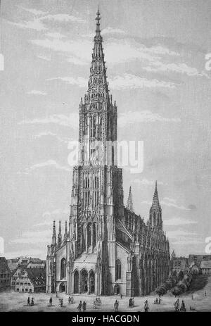 Ulm Minster, Ulmer Muenster, is a Lutheran church located in Ulm, Germany, 1880, historic illustration, woodcut