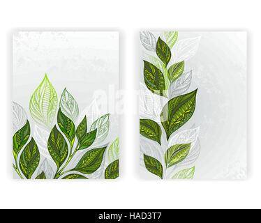 Design With Patterned Green And Gray Leaves Of Tea On A Textural Background
