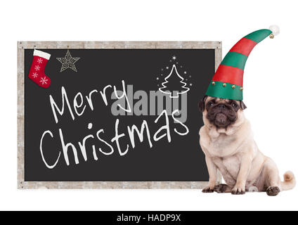 cute pug puppy dog wearing an elf hat, sitting next to blackboard sign with text merry christmas, on white background - Stock Photo