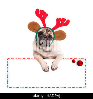 cute pug puppy dog wearing reindeer antlers for christmas, hanging on blank sign, on white background - Stock Photo