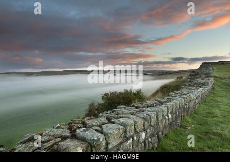 Looking east along Cawfield Crags, Hadrian's Wall, Northumberland - a dawn view with low-lying mist on the fields - Stock Photo