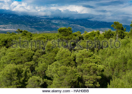 Panorama of Velebit and Tulove Grede from the old castle in Novigrad, Croatia, Mediterranean - Stock Photo