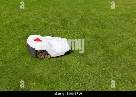 robotic lawn mower working on green grass - Stock Photo
