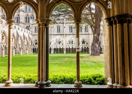 The cloisters of Salisbury cathedral in Wiltshire. - Stock Photo