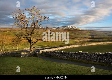 Pen-y-ghent, one of the Three Peaks, seen from Selside, near Settle, North Yorkshire, UK - Stock Photo