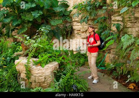 ... Fern Grotto, San Antonio Botanical Garden, San Antonio, Texas   Stock  Photo