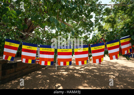International Buddhist Flags Sacred City Of Anuradhapura North Central Province Sri Lanka