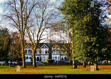 Houses in Spratt Hall Road, Wanstead, London E11 photographed from across Christchurch Green - Stock Photo