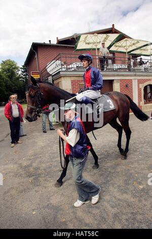 Jockey Darren Moffatt on the horse Au Backe on the sixth race day on 9.8.2008 at Dresden-Seidnitz race track, Saxony - Stock Photo