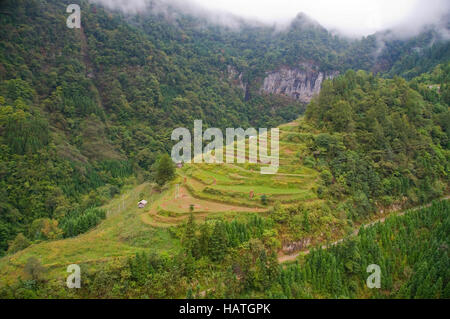 The mountain rice terraces in Guizhou Province of China are interesting and scenic. - Stock Photo