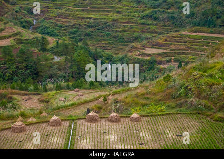 The rice terrace fields in Guizhou Province of China are interesting and scenic even affer the harvest. - Stock Photo
