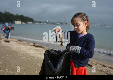 Little girl (age 6 ) pick up rubbish from the beach with her family. - Stock Photo