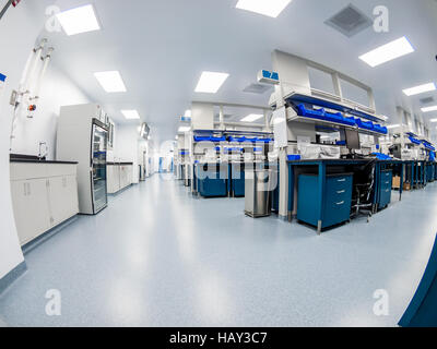 Cellular Immunotherapy QC Lab - Stock Photo