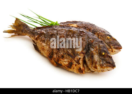Two roasted dorade fish  isolated. - Stock Photo