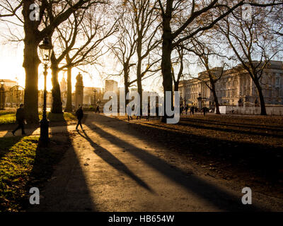Long shadows in Green Park with Buckingham Palace - Stock Photo