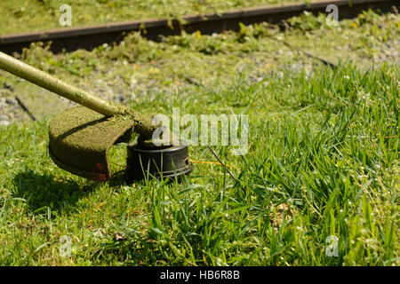 Gardening with trimmer - closeup mowing - Stock Photo