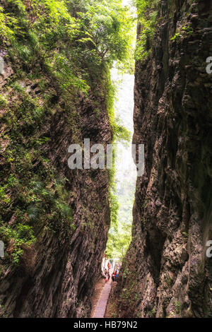 zhangjiajie grand canyon daxiagu - Stock Photo