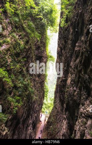 zhangjiajie grand canyon daxiagu - Stock Photo