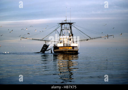 Commercial fishing boats in texas usa that fish for gulf for Texas gulf coast fishing
