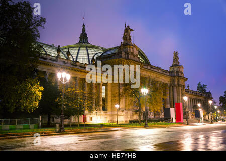 The Grand Palais des Champs-Elysees in Paris, France at night - Stock Photo
