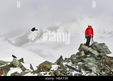 Man on top of snow covered mountain looking at bird in flight, Saas Fee, Switzerland - Stock Photo