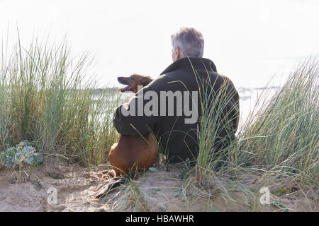 Rear view of man and pet dog sitting on sand dunes, Constantine Bay, Cornwall, UK - Stock Photo