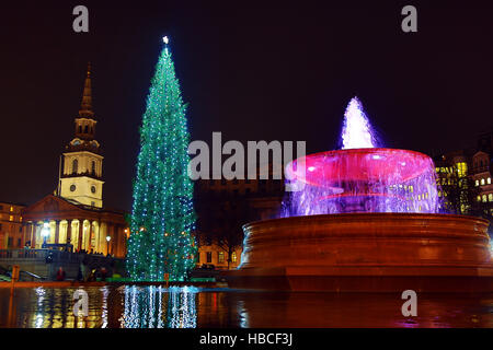 London, UK. 5th December 2016. Trafalgar Square Christmas Tree and fountain in Trafalgar Square, London, UK. Credit: - Stock Photo