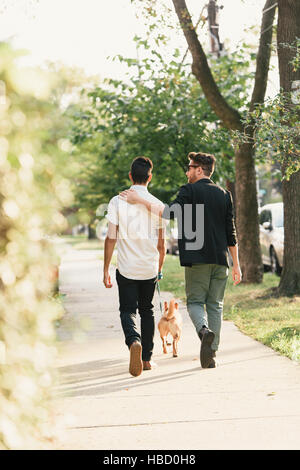 Rear view of young male couple walking dog on suburban sidewalk - Stock Photo