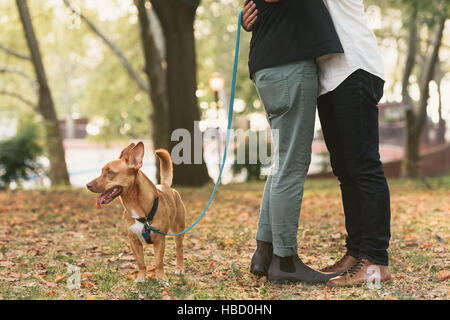 Waist down view of young male couple with dog hugging in  park - Stock Photo