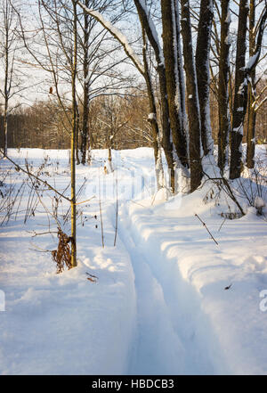 Ski track in deep snow - Stock Photo