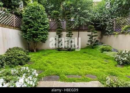 Japanese garden in Holland Park, London - Stock Photo