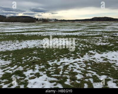 Landscape of green field covered with snow - Stock Photo