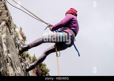Female rock climber abseiling down with safety rope on a rockface seen from below. North Wales, UK, Britain - Stock Photo