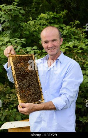 Beekeeper with honeycomb frame - Stock Photo