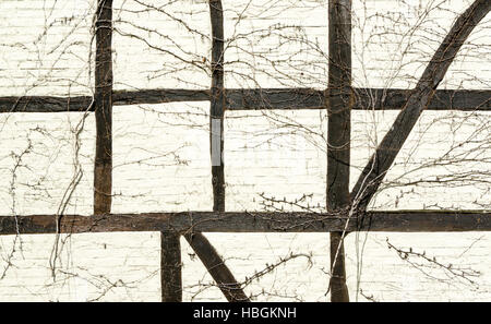 timber-framed wall - Stock Photo