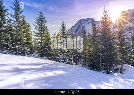 Sun rays over snowy alpine scene - Stock Photo