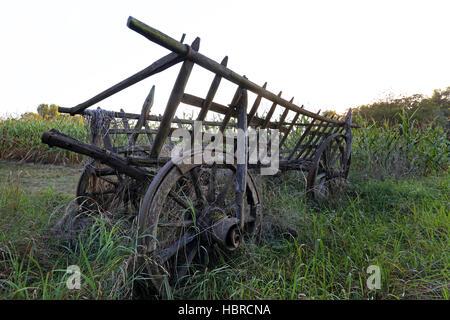 hayrack - Stock Photo